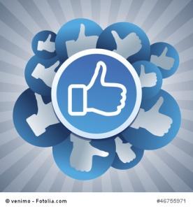 Facebookfans_Bluulake