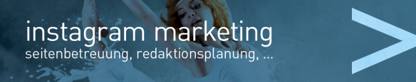 bluulake facebook marketing gmunden